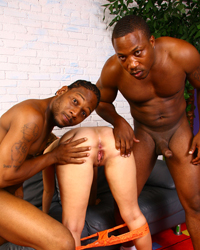 Two In The Pink Black Dick Gallery